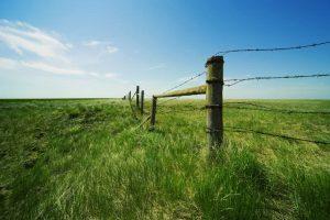 Земельные споры, оформление прав, выкуп, перераспределение